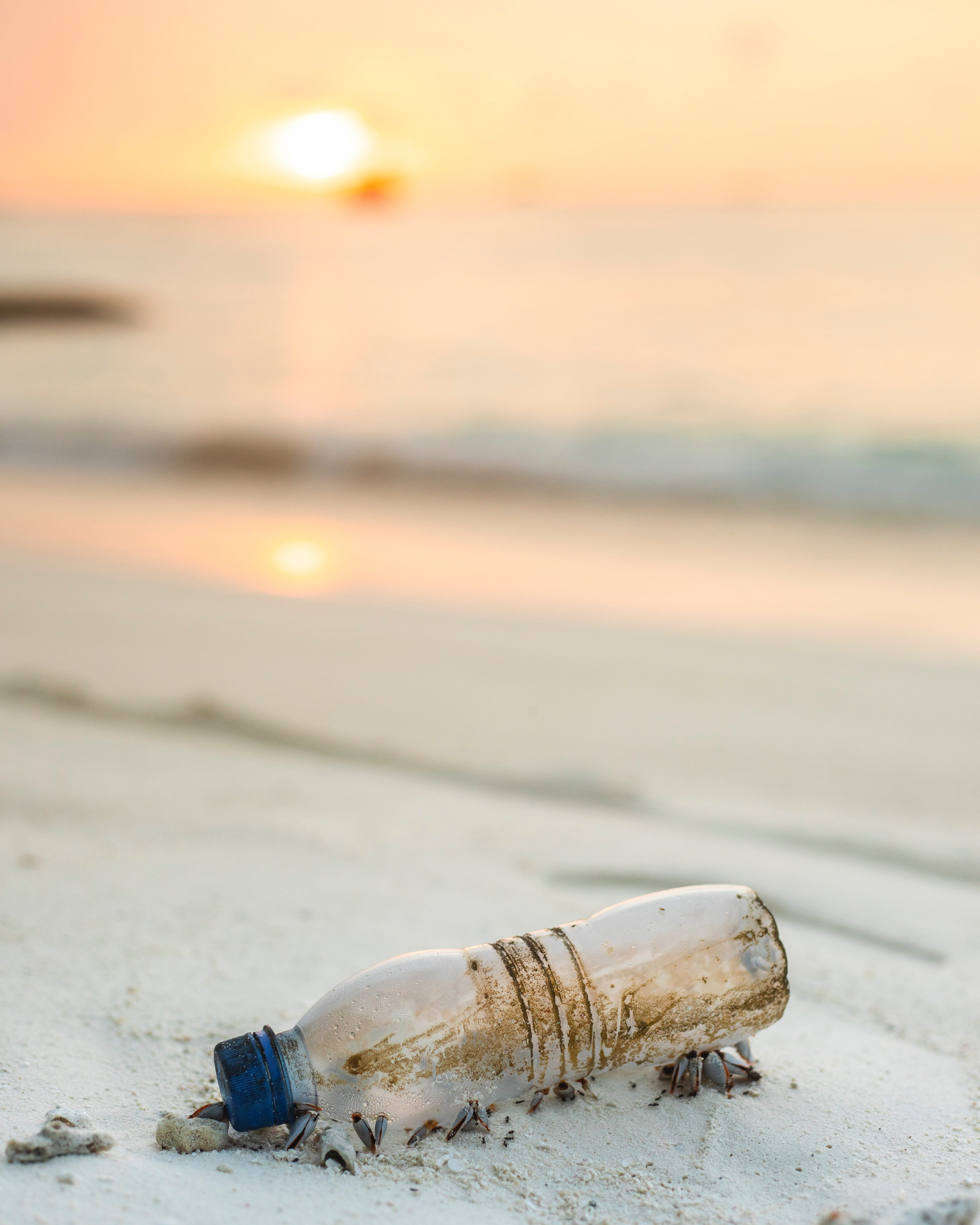 Plastic Bottle on the Ocean